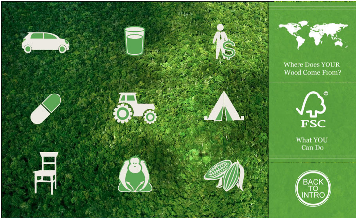 Forests, Furniture and The Future