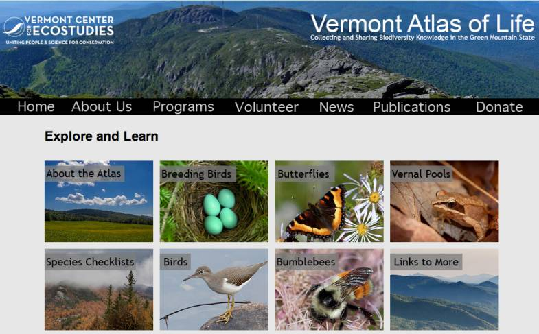 Vermont Center for Eco Studies | Naturalist of the Year Contest