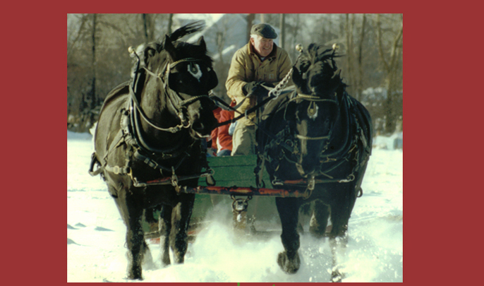 Dad's Percherons pulling a sleigh at Christmastime in 1993. Plattsburgh, NY.