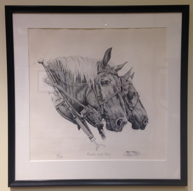 A pen and ink drawing of the O'Neil Family Farm's Percheron draft horses, Maude and Tony by Iowa artist William A Webber.