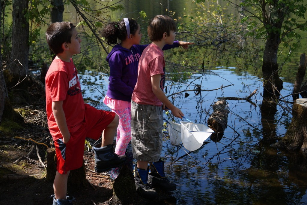 sponsored BEEC's Aquatic Field Trip, where Vernon Elementary School students got the opportunity to explore a pond ecosystem and observe a variety of aquatic organisms