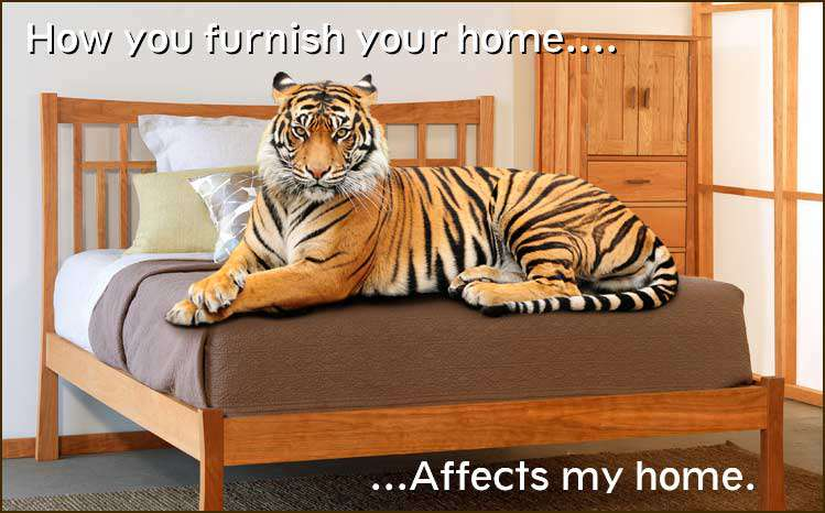 Buy Sustainable Furniture | Forest Conservation | Endangered Species