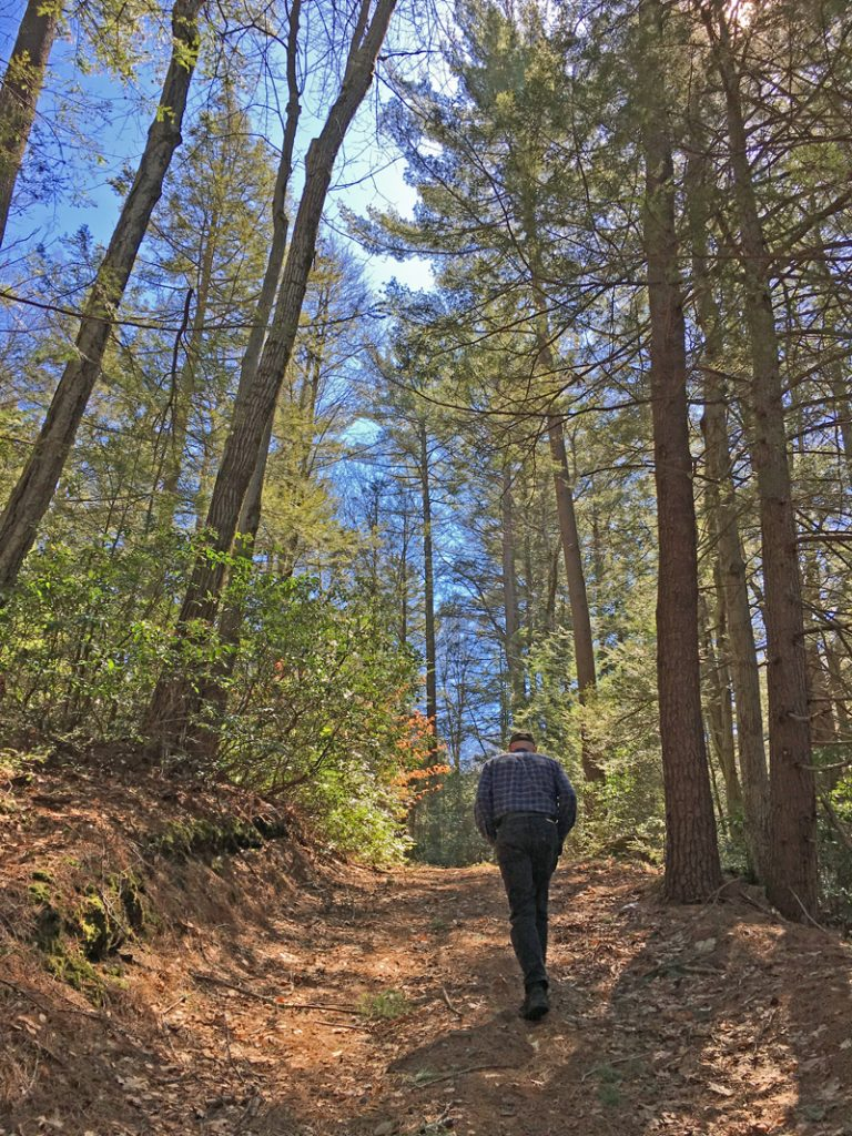 Take a hike at Stonehurst and celebrate Spring.