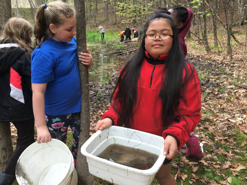 Environmental Science | Third graders holding a sample of pond water | BEEC, VES & Vermont Woods Studioss
