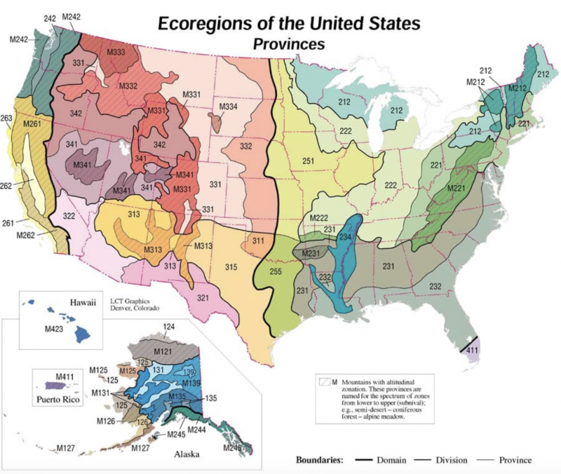 Saving the Monarch Butterfly | EcoRegions of the USA | US Forest Service