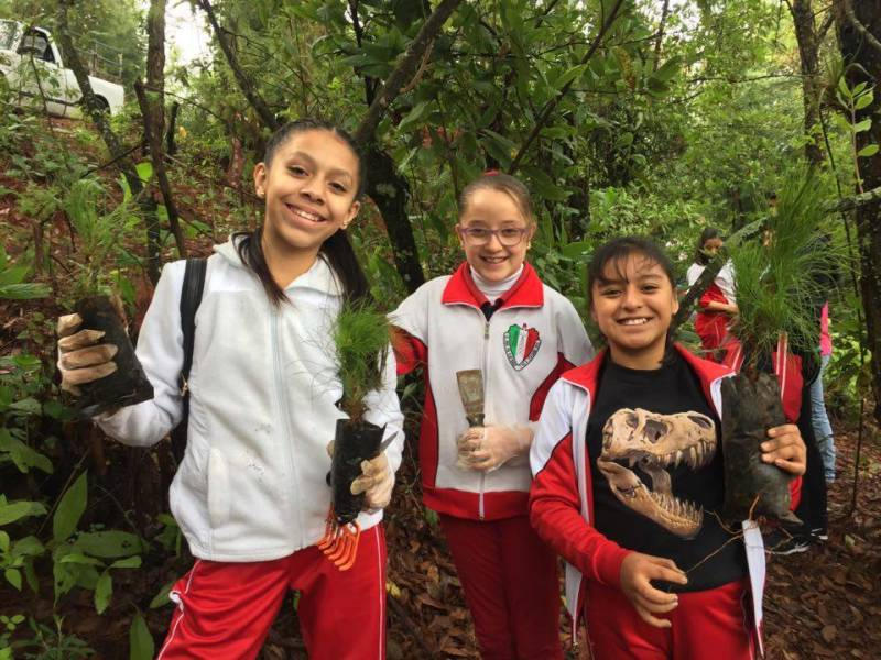 We work with Forests For Monarchs in Mexico. These girls are volunteering to plant trees in their community.