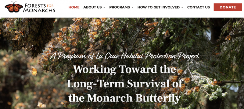 Help the Monarch | Website of Forests for Monarchs